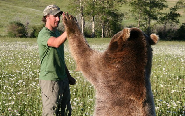 bear-high-five.jpg
