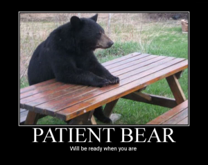 And Patient Bear.  Of course.